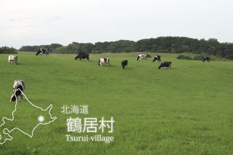 イメージ図/タンチョウ・釧路湿原PR動画(繁体字)