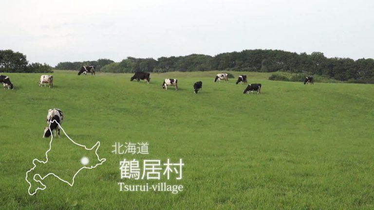 タンチョウ・釧路湿原PR動画(English)
